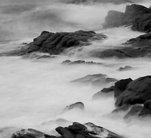 Sleepy Bay  by Stephen Colquitt