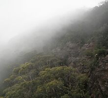 Jamison Valley Mist by Kellea Croft