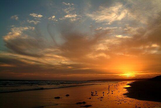 Pt Impossible Torquay, Great Ocean Road by Joe Mortelliti