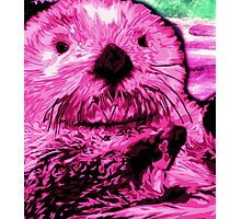 Pink Sea Otter Photographic Print