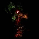 fireworks dragon by david gilliver