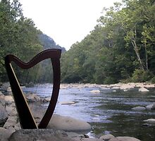 Harp at the River by Beth Stockdell