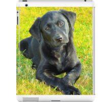 India Puppy 2 iPad Case/Skin