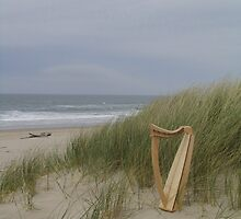 Harp at the Beach by Beth Stockdell