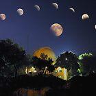 Lunar Eclipse Mosaic by Bob Merhebi