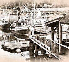 Gig Harbor, Washington by Bryan Peterson