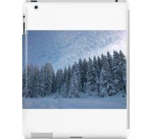 Alpine Wonderland iPad Case/Skin
