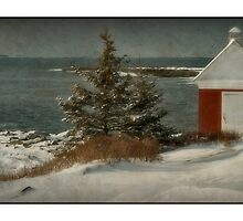 Oil  House  Pemaquid  Light House by Dave  Higgins