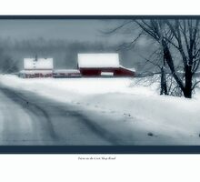 Winter Road by Dave  Higgins
