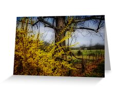color spring yellow... Greeting Card