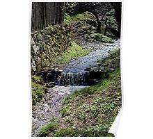 Small creek along the fence in Sibiel Romania Poster