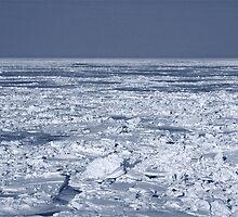 Frozen Shore by EliTynan