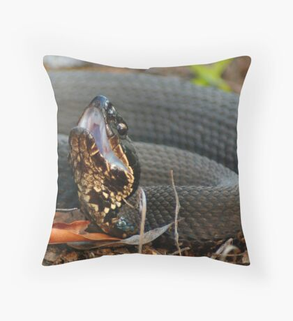 Cottonmouth Moccasin Posed For Strike Throw Pillow