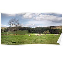 Rolling Pasture Poster