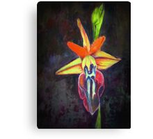 Orchid on dark background Canvas Print