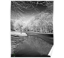Infrared Relection B&W Poster