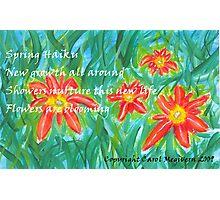 Spring Haiku Photographic Print
