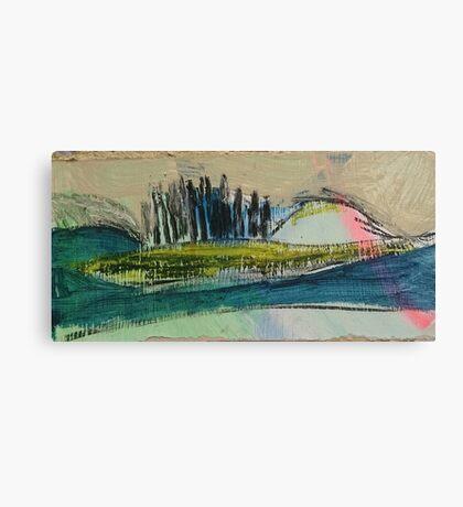 between 29.04.15 (hairbrush) Canvas Print
