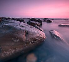 Rock and Barnacles reworked by stephen foote