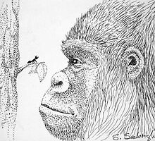 Gorilla and Ant by sally seabright