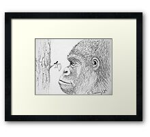 Gorilla and Ant Framed Print