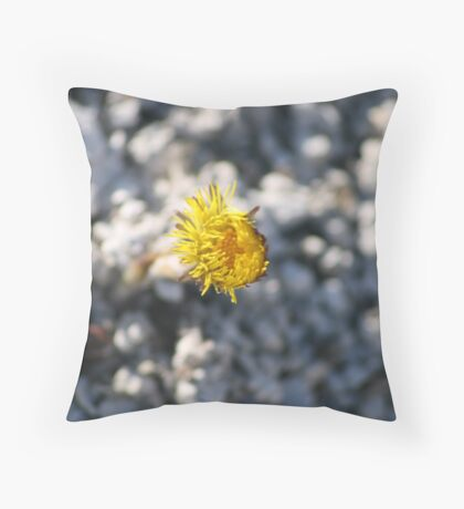 A little glimmer of hope Throw Pillow