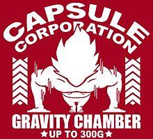 Gravity Chamber by DOPEFLVR