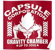 Gravity Chamber Poster
