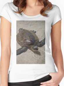Honu Swimming Women's Fitted Scoop T-Shirt
