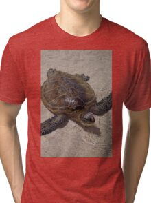 Honu Swimming Tri-blend T-Shirt