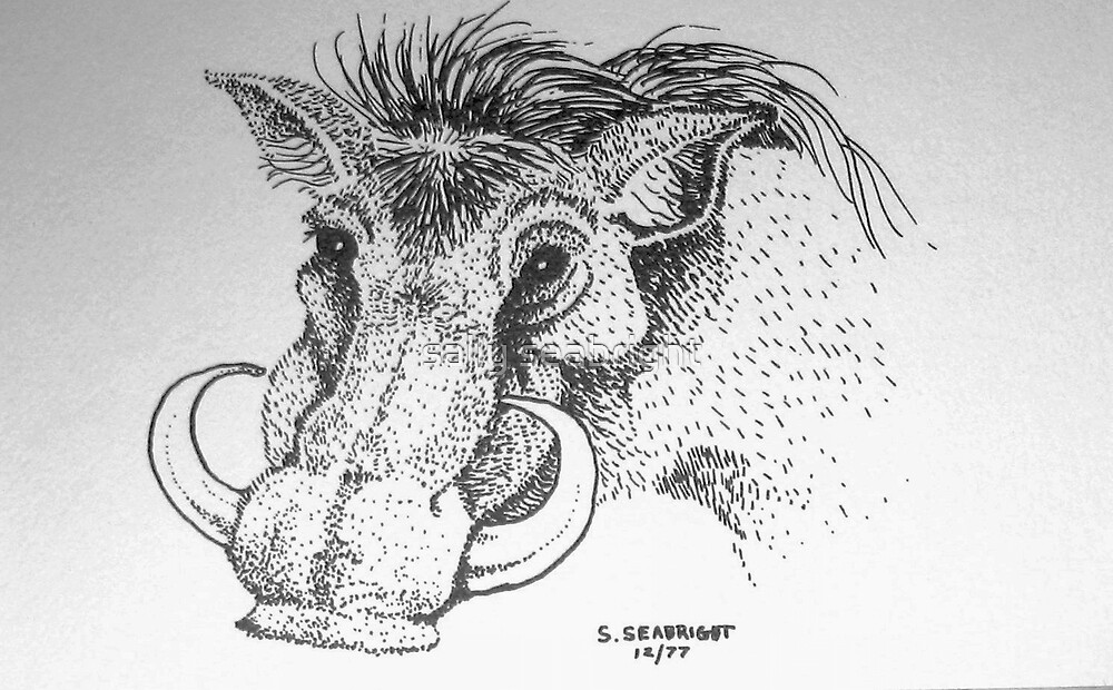 Warthog by sally seabright