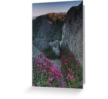 Penstemon, Moro Rock, & the Sierra Nevada Greeting Card