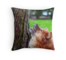 Take That Squirrel Throw Pillow