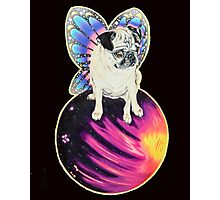 Puggerfly In Space Photographic Print