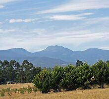 A 'sleeping beauty' under a Tasmanian sky by GilliB