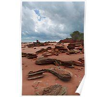 Roebuck Bay - Waiting for the rain Poster