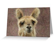Suri Alpaca baby Greeting Card