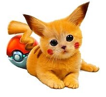 Pikachu the Kitty by Pedro0347