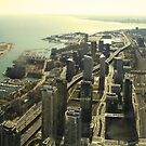 CN Tower Panorama by Mahjabeen Mankani