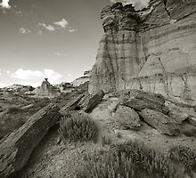 San Juan Badlands by David Louis Arnold