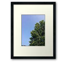 Tree in the Sky Framed Print