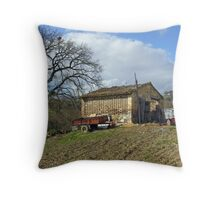 Umbrian small-holding below Civitella Benazzone, central Italy. Throw Pillow