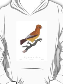 Birds of Paradise Rollers T-Shirt