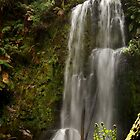 Beauchamp Falls Otways by Joe Mortelliti
