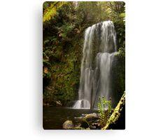 Beauchamp Falls Otways Canvas Print