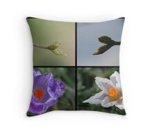 Four witnesses of spring Throw Pillow