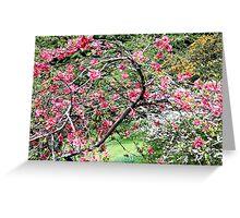 Wild Spring Blossom Greeting Card