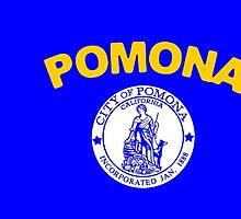 Flag of Pomona  by abbeyz71