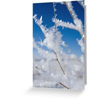 Blizzard Aftermath Greeting Card