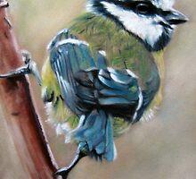 Blue Tit by Valerie Simms